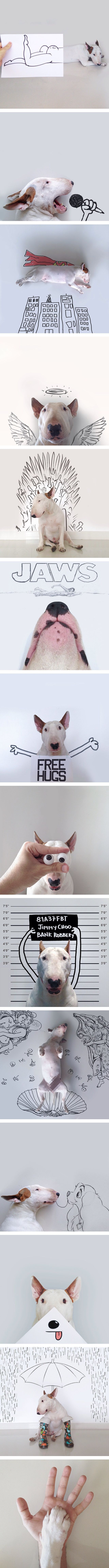 Dog Owner Creates Funny Illustrations With His Bull Terrier And They Are Awesome