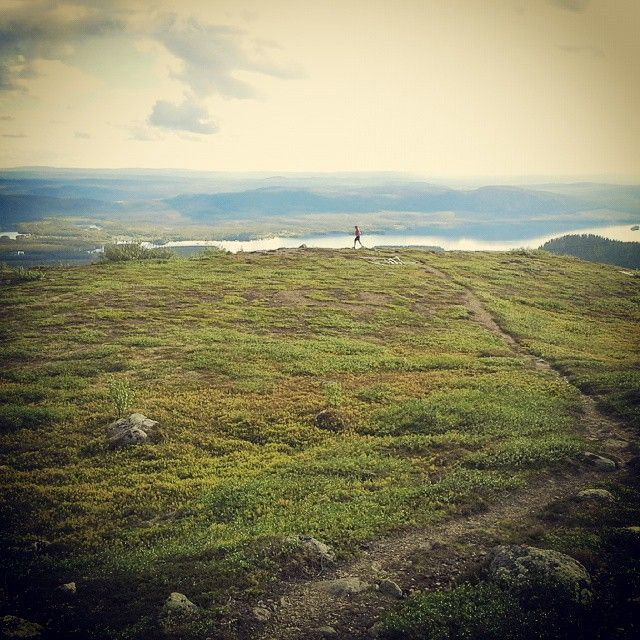 #23. Exactly sit months ago. Running in the middle of the night. Above the tree line and midnight sun. #trailrunning