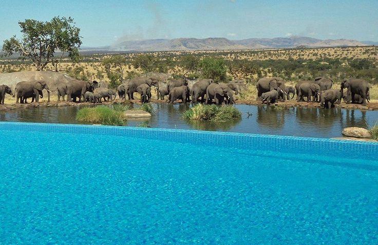 Four Seasons Safari Lodge - Serengeti National Park, Tanzania