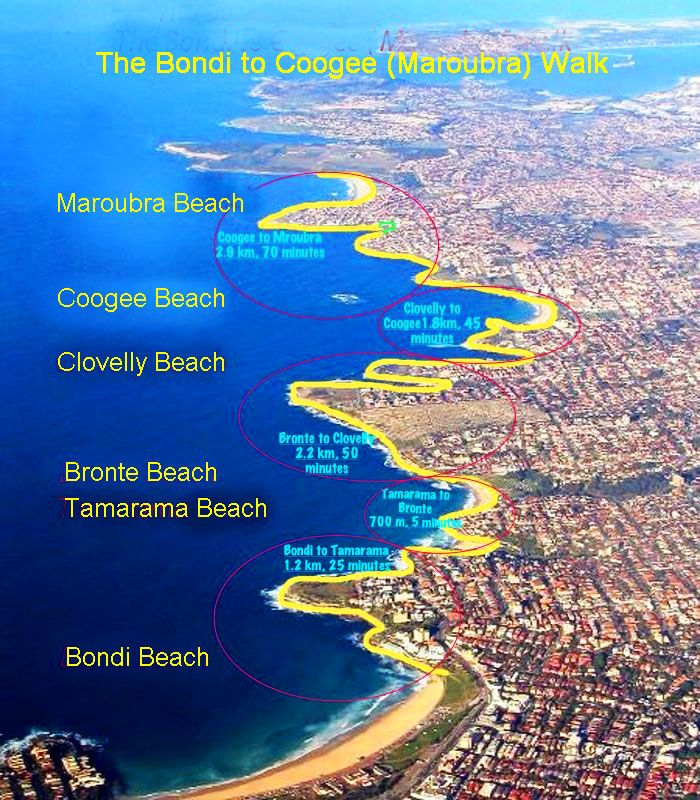 Sydney's Southern Beaches; the view looks southwards from the city / The Bondi to Coogee Walk - This walk features beautiful views and is known as one of Sydney's best coastal walks.