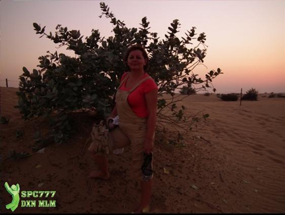 Gyémánt hölgy a sivatagban