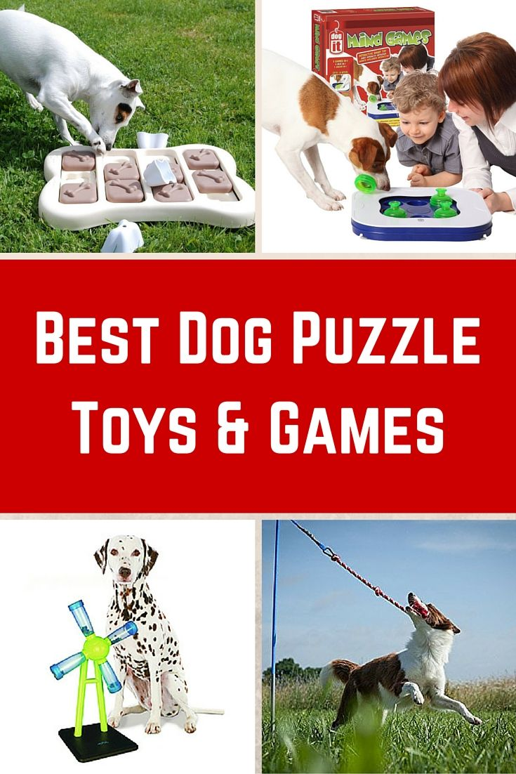 Keep your dog occupied for hours.