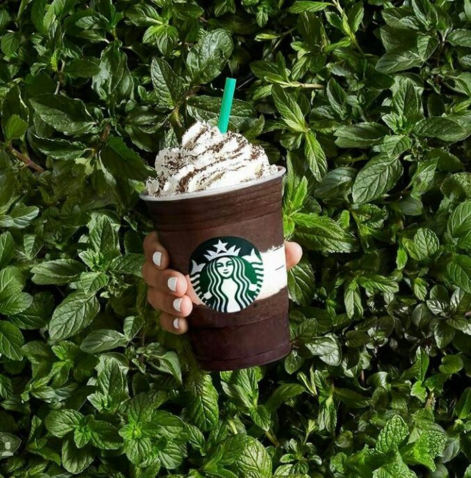 Midnight Mint Mocha Frappuccino Starbucks