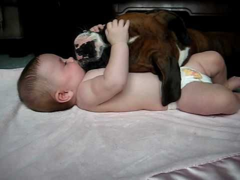 Boxer dog and a baby, cuteness²