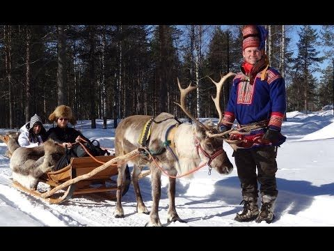Corrida de trenó e renas na Aldeia do Papai Noel em Rovaniemi na Lapônia
