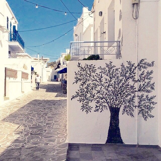 Impressive alley with olive tree painting on the wall , at Kimolos island (Κίμολος). Greek traditional tree meets Cycladic style .