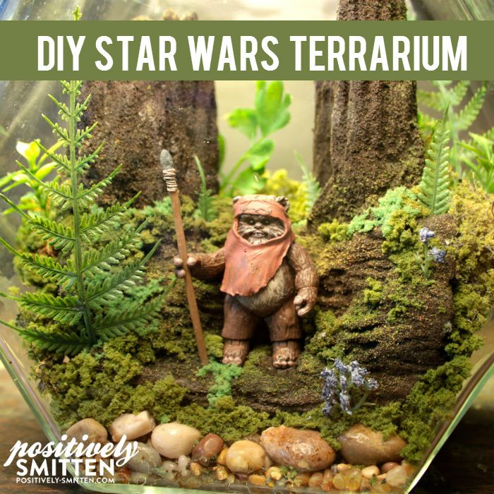 DIY Star Wars Terrarium | Positively Smitten