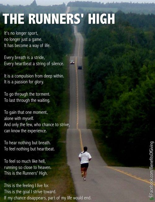 the runner's high. Running - something I hate and love at the same time!