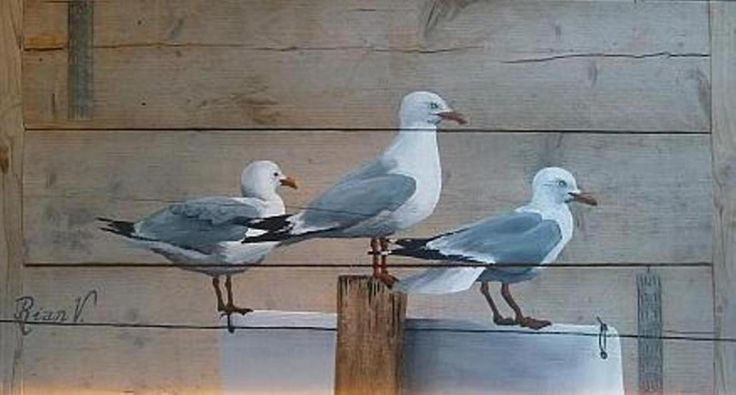 New Zealand gulls, painting on scaffolding wood