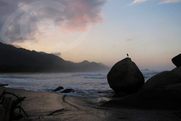 Tayrona Park, a treasure to discover.
