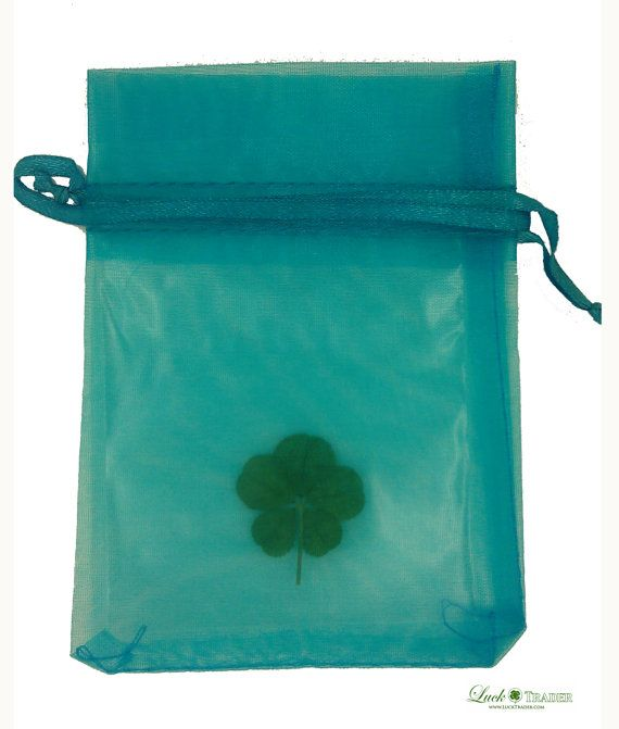 Lucky Real Five Leaf Clover from the White Clover by LuckTrader, £9.99