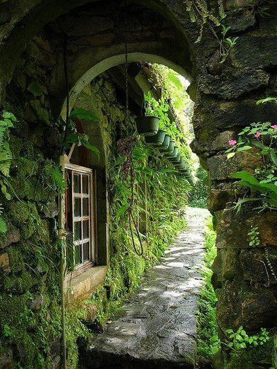 Ivy Cottage...wonder how old this place is.