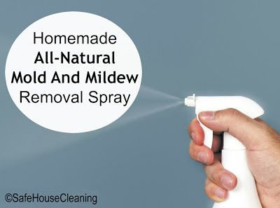 1000 ideas about mildew remover on pinterest mildew stains remove mold and holly hobbie - Natural ways remove mold ...
