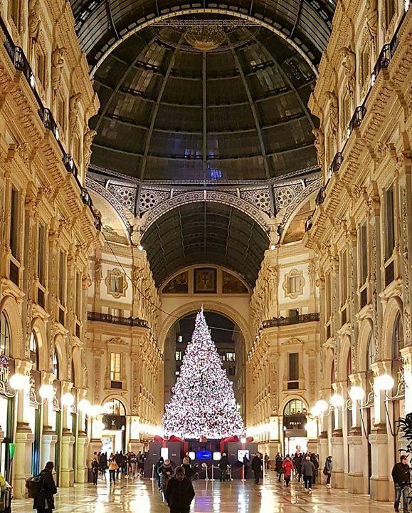 Buongiorno #Milano Foto di Ferry V. #milanodavedere Milano da Vedere