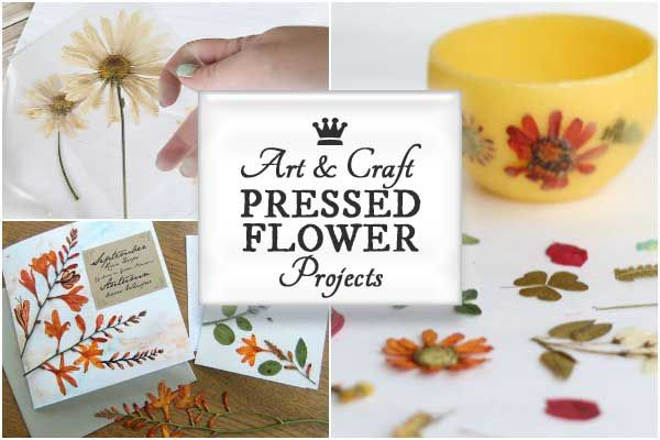 25 Pressed Flower Art & Craft Projects