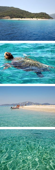 The Bay of Laganas, located on the South West coast of Zante Zakynthos, Zante in the Greek Islands is considered to be the largest nesting ground in the Mediterranean for the Caretta Caretta loggerhead sea turtle.