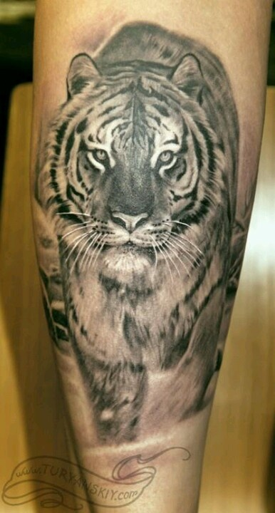 Gorgeous black and white tattoo. Very well done.
