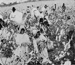 King Cotton Diplomacy:  The Southerners believed that if they stopped selling cotton to the British and French they(the British and French) would ally with the south.