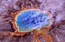 Archaea foram detectados primeiramente em ambientes extremos, tais como em fontes hidrotermais.