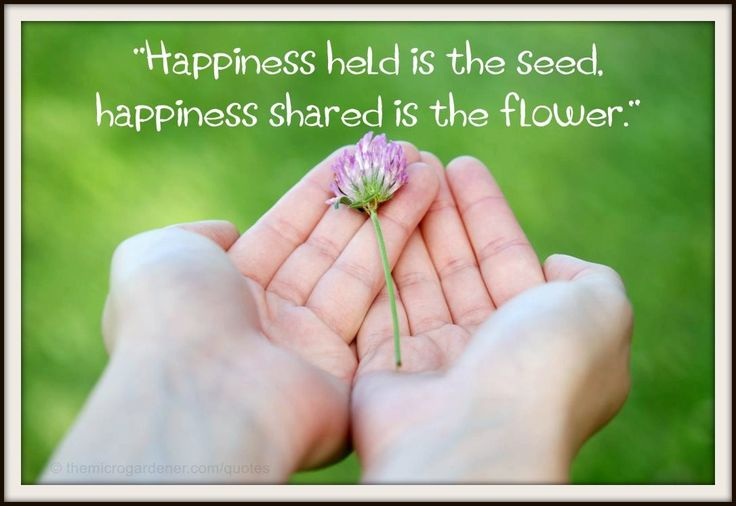 Happiness held is the seed, happiness shared is the flower. More tips @ themicrogardener.com