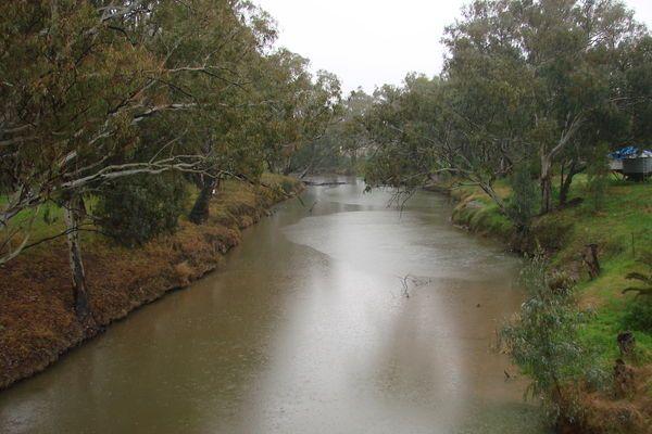 Lachlan River CK