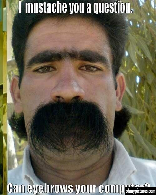 The real life Lorax: Real Life, The Real, Hair Doe, Funny Pictures, Funny Photos, Eyebrows, So Funny, Mustache, Alex O'Loughlin