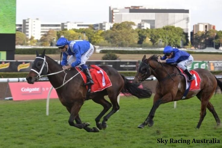 'Winx-Effect': Few Want To Challenge Champ In Turnbull Stakes - Horse Racing News   Paulick Report