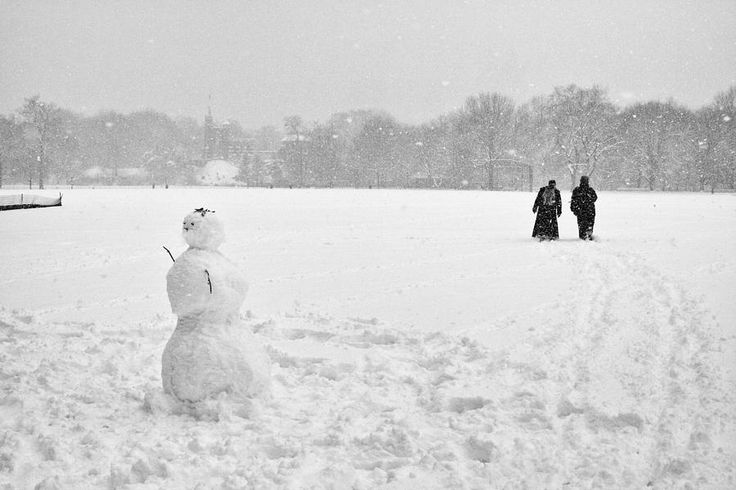 Great Lawn Blizzard 2008 Photograph by Dave Beckerman