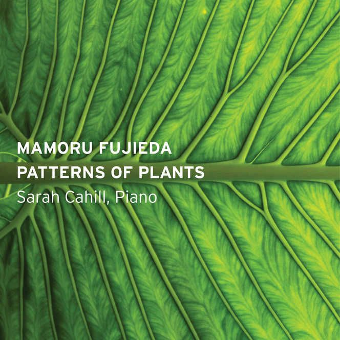"Patterns of Plants, composed between 1996 and 2011, is Mamoru Fujieda's magnum opus. Working with the ""Plantron,"" a device created by botanist and artist Yūji Dōgane. MAMORU FUJIEDA: PATTERNS OF PLANTS 