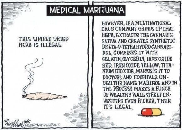 sociological effects of marijuana Sociological issues are issues that a large part of society feel are wrong or problematic examples include issues that everyone view as a problem, like murder, and.