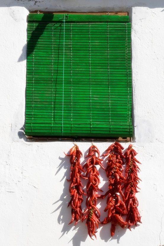 Stillleben aus den Alpujarras - bergige Region zwischen Sierra Nevada und Meer. Provinz Granada.