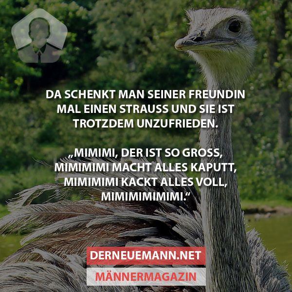 Geschenk #derneuemann #humor #lustig #spaß
