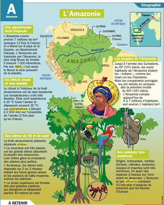 Carte Amerique Du Sud Amazonie.L Amazonie Fiches French Language Learn French Et Geography