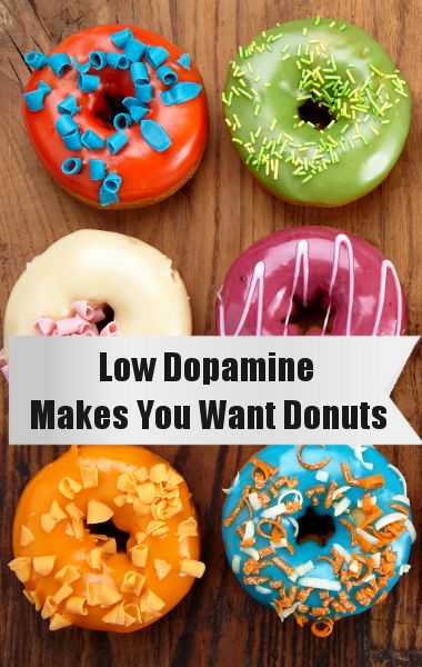 Dopamine Causes Cravings