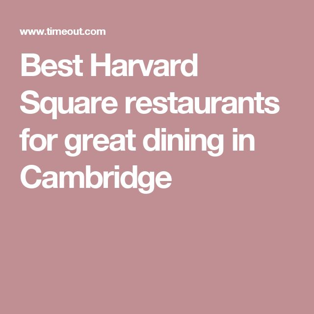 Best Harvard Square restaurants for great dining in Cambridge
