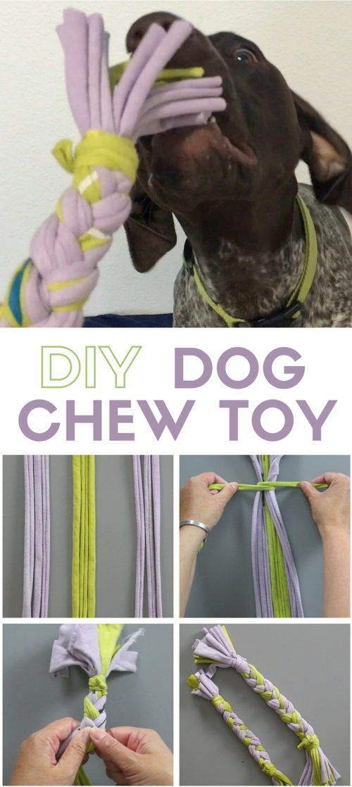 DIY Craft: Learn how to make a dog chew toy using your old t-shirts. Your best friend is going to love it because it smells like you! Make in less than 30 minutes.