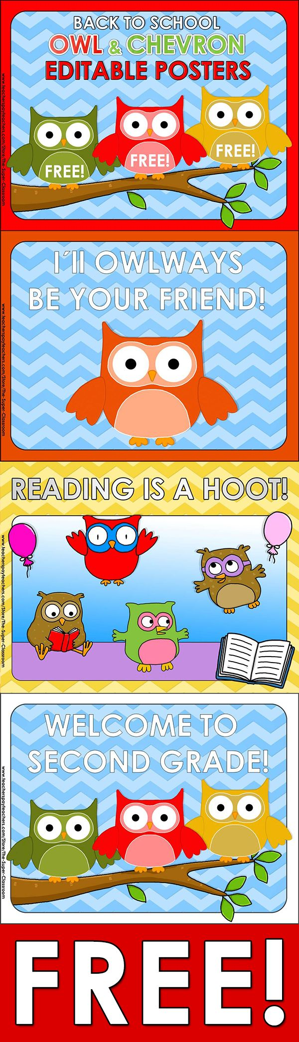 Back to School – OWL  CHEVRON – Editable Posters  Here you are 3 FREE posters for your OWL  CHEVRON Themed Classroom!
