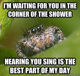 Misunderstood Spider meme | quickmeme