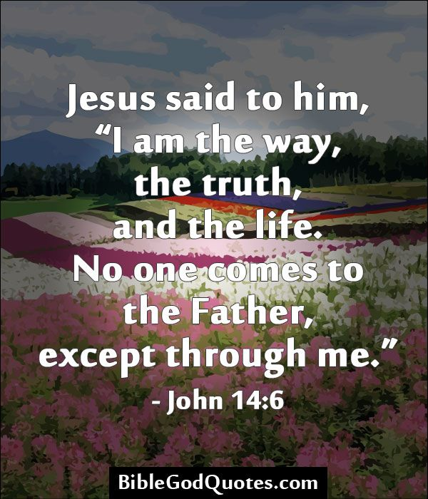 Quotes Of Jesus In The Bible: Bible Quotes John 14 6. QuotesGram