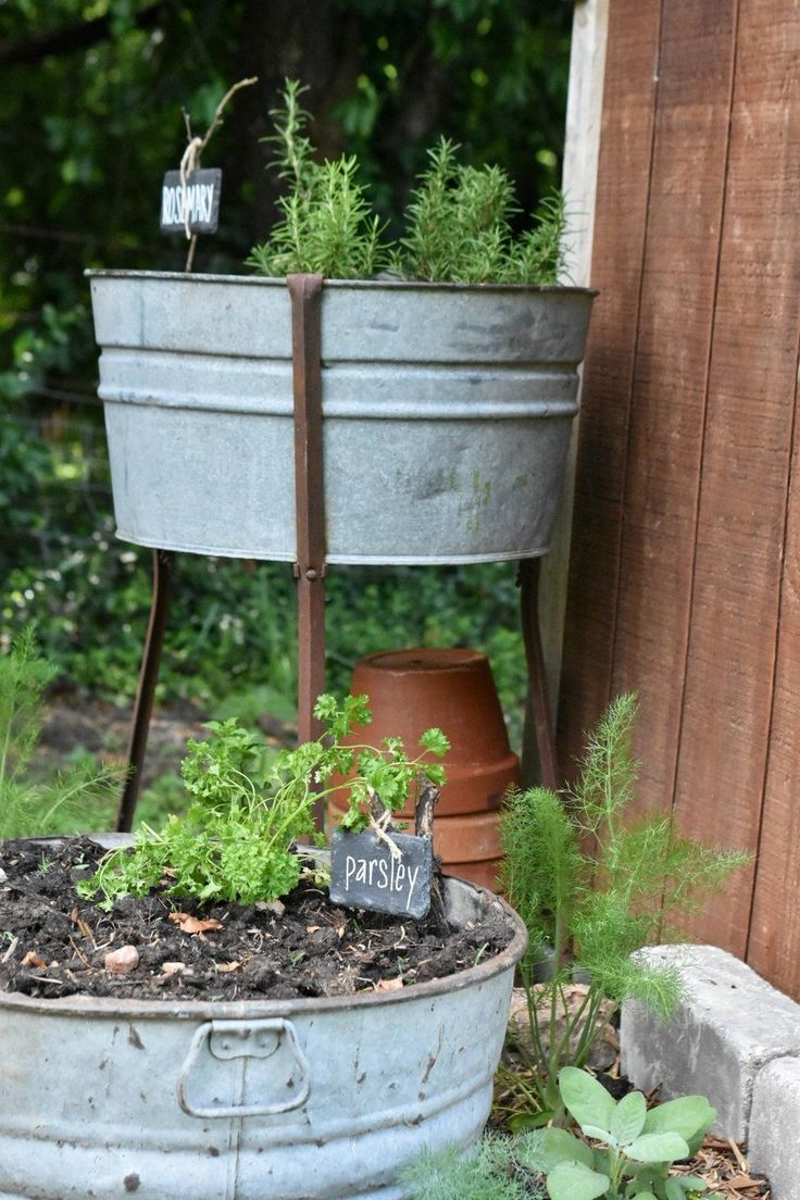 Galvanized Container Planters For The Garden Bucket Planters Container Gardening Garden Tub