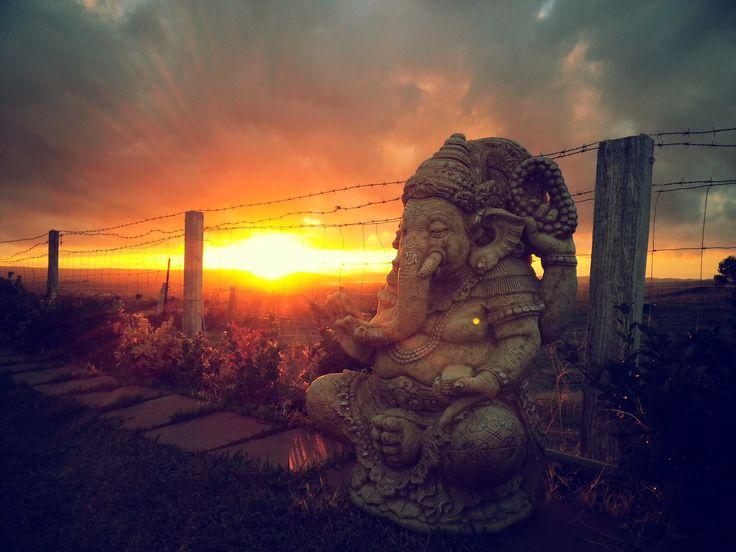 suryalila.com #Ganesha #yoga centre