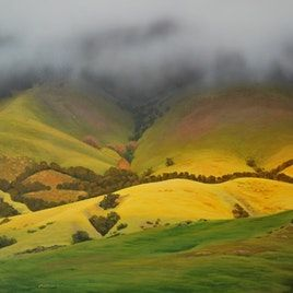 Original artwork from artist Peter Mathios on the Daily Painters Gallery