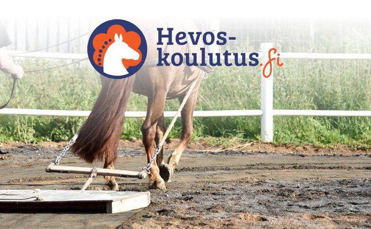 Ratsastuskentän lanaaminen hevosella! Opi ja onnistu ammattilaisten ohjeilla!
