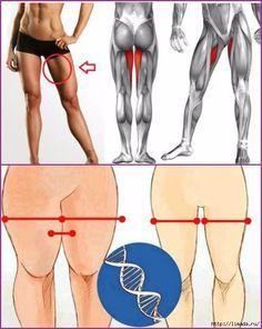 Упражнения для укрепления мышц бедер и ног.