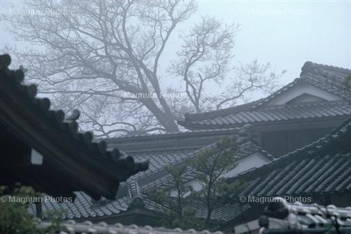 China roofs