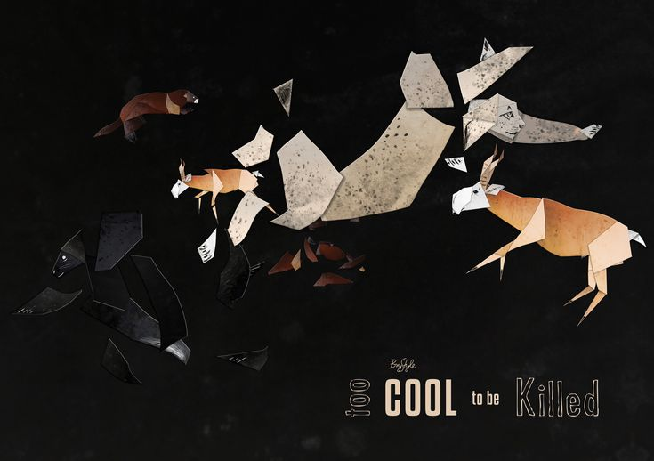 Too cool to be killed - animation cover Made at the Media and Design Department, Visual Arts Institute, Eger, Hungary #endangered #animals #animation #BryStyle #lynx #saiga #mink #monkseal #madeineger #vizualismuveszetiintezet #mediadesigneger #vmi