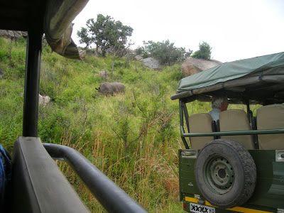 Kruger National Park Calendar - February   #travel #tourism #southafrica #kruger #safari