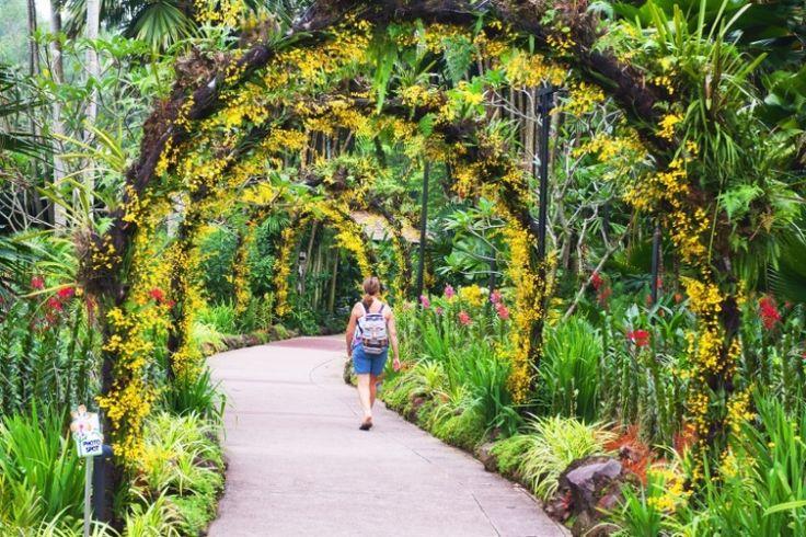 Jardim Botânico de Cingapura (Cingapura): Criado no coração de Cingapura, em 1856, o que era um jardim botânico colonial britânico se transformou em um moderno centro de pesquisas científicas voltado à educação e conservação de espécies. A paisagem cultural inclui uma série de características históricas, plantações e construções que ilustram a evolução do período, assim como de toda Cingapura. O Jardim Botânico é marcado também por ter representado um papel fundamental na pesquisa do…