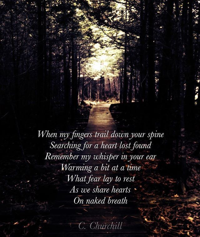 #lostandfound  When my fingers trail down your spine Searching for a heart lost found Remember my whisper in your ear Warming a bit at a time What fear lay to rest As we share hearts On naked breath  C. Churchill  #poetry #poetrycommunity #poetryisnotdead #igpoet #spilledink #universe #stars #igwriters #writer #inked #poetryporn #writerscommunity #energy #wordporn #inspiration  #lovequotes  #igwriters  #dreamer #passion #poem #twinflame #connection #empath #lovers #instapoem #cchurchill