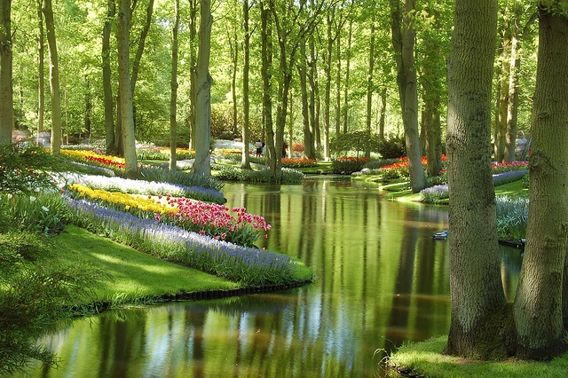 Keukenhof, The Netherlands. I would so get married here.